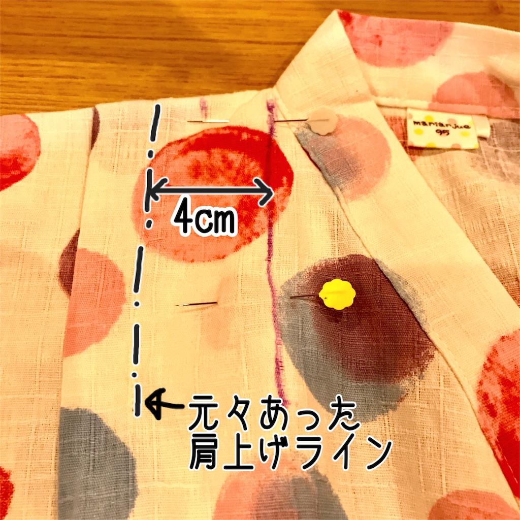 f:id:yuyuyunozi:20180706091838j:image